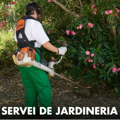 Servei de jardineria grup xit for Jardineria la noguera